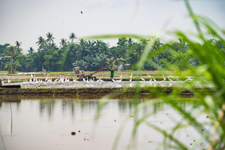 Peluang Sektor Swasta dalam Proyek Adaptasi Perubahan Iklim